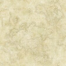 Sand Dollar Hardings World Map Wallpaper