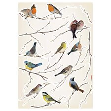 Komar Living Birds Decals