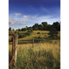Ultimate Rolling Ranchland Wall Mural