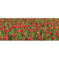 <strong>Brewster Home Fashions</strong> Ultimate Tulips Panoramic Wall Mural