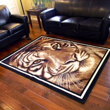African Adventure Camel Large Tiger Face Rug