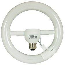 22W Fluorescent Light Bulb