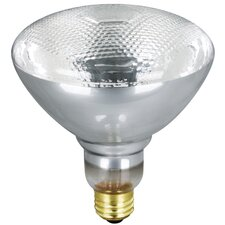 PAR38 Reflector Flood Light Bulb (Pack of 2)