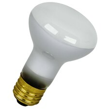 120-Volt Light Bulb (Pack of 2)