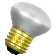 Frosted 120-Volt Incandescent Light Bulb