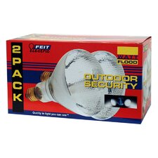 Reflector Flood Light Bulb (Pack of 2)