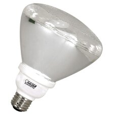 <strong>FeitElectric</strong> ECOBulb CFL Outdoor Bulb