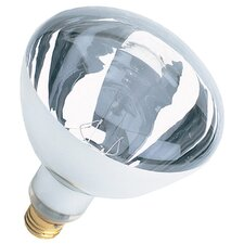 120-Volt Incandescent Light Bulb (Set of 12)