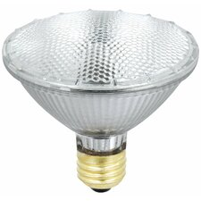 55W Halogen Light Bulb