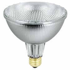 70W 120-Volt Halogen Light Bulb