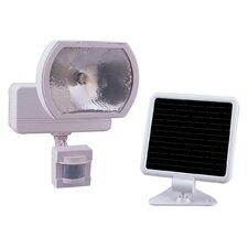 1 Light Motion Sensor Light