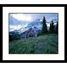 <strong>Great American Picture</strong> Mt. Ranier Spring Framed Photograph - Adam Jones