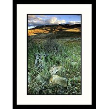 National Treasures 'John Day National Monument, Painted Hills, Oregon' by Donald Higgs Framed Photographic Print