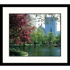 Cityscapes Boston Public Garden Spring Framed Photographic Print
