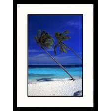 <strong>Great American Picture</strong> Tropical Palm Trees Framed Photograph - Frank Chmura