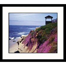 La Jolla Cliffs Framed Photograph