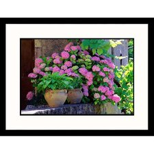 <strong>Great American Picture</strong> Pink Hydrangeas Framed Photograph