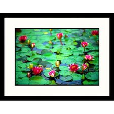 <strong>Great American Picture</strong> Red Water Lilies Framed Photograph