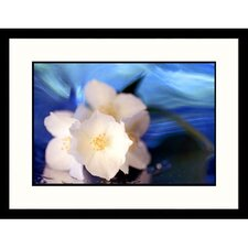 Florals White Flowers Framed Photographic Print