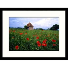 <strong>Great American Picture</strong> Loire Valley Poppies Framed Photograph