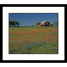 <strong>Great American Picture</strong> Texas Barn and Field Framed Photograph - Adam Jones