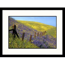 <strong>Great American Picture</strong> Gorman California Framed Photograph