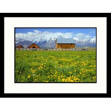 Landscapes 'Barn and Dandelions, Sierra Nevada Mountains' by Igna Spence Framed Photographic Print