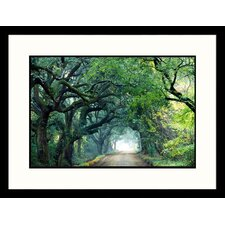 Edisto Island, South Carolina Framed Photograph - Eric Horan