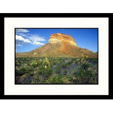 <strong>Great American Picture</strong> Cerro Castellan Mt, Big Ben National Park, Texas Framed Photograph - Jack Jr Hoehn