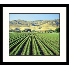 <strong>Great American Picture</strong> California Farm Framed Photograph