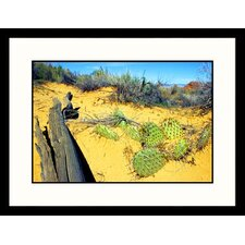 Desert Succulents, Utah Framed Photograph