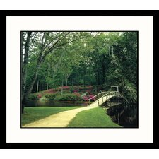Landscapes 'Southern Bridge' by Mark Gibson Framed Photographic Print