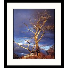 <strong>Great American Picture</strong> Gathering Storm Framed Photograph