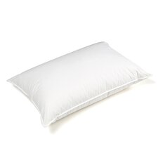 Majestic Medium Cotton Goose Down Pillow in White