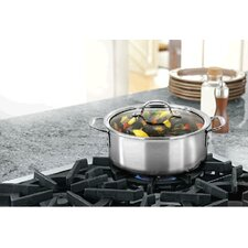 Triply Stainless Steel 5 Quart Dutch Oven