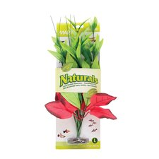 Marina Naturals Pickerel Silk Plant in Red/Green