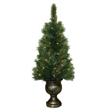 4' Potted Sheridan Pine Entryway Christmas Tree with 50 Clear Lights