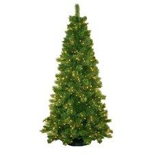 7' Sheridan Pine Christmas Tree with 350 Clear Lights