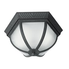 <strong>Woodbridge Lighting</strong> Glenwood 2 Light Outdoor Flush Mount