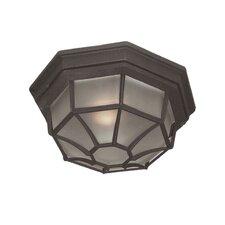 Basic 1 Light Outdoor Flush Mount