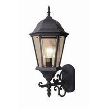 Basic 1 Light Outdoor Wall Light