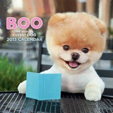 Boo; The Life of the World's Cutest Dog