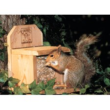 Combo Squirrel Hopper Bird Feeder