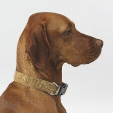 Triple Layer Paisley Cedar Microvelvet Dog Collar