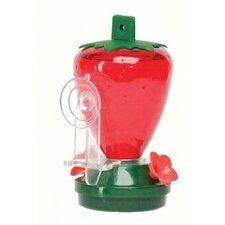 Strawberry Window Decorative Bird Feeder