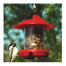 Beck's Chick Hopper Bird Feeder