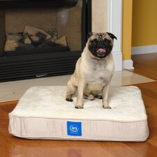 <strong>Serta Pet Beds</strong> True Response Dog Pillow with Memory Foam