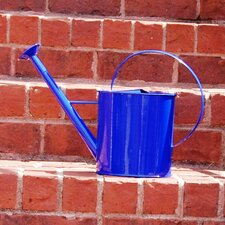 1-Gallon Metal Watering Can with Long Spout
