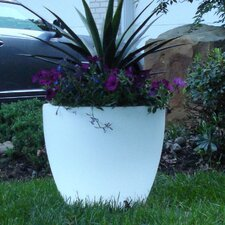 Bon Décor Bowl Pot Planter
