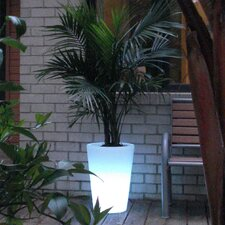 Bon Décor Straight Cone Pot Planter